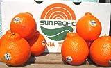 ミネオラオレンジ 希少大玉 10kg 54玉前後 ランキングお取り寄せ