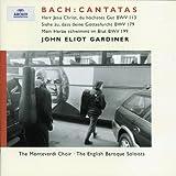 Bach: Trinity Cantatas II
