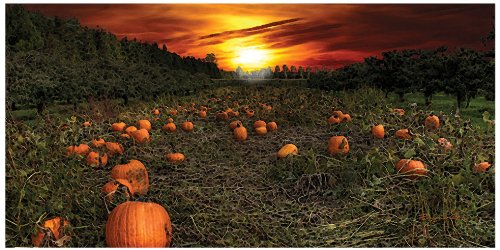 Ohio Wholesale Radiance Lighted Pumpkin Patch Canvas Wall Art, From Our Harvest Collection