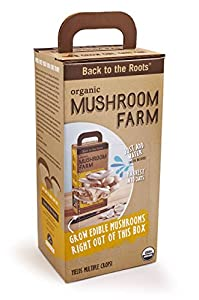 Back To The Roots Mushroom Farm