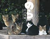 2015猫カレンダーのら ([カレンダー])