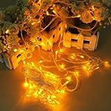 LEDイルミネーションライト デコレーションライト ストリングライト クリスマス パーティなどに大活躍 全長10M LED100灯 点灯8パターン コントローラ付 イエロー