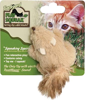 OurPets Play-N-Squeak Backyard Cat Toy