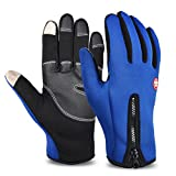 Vbiger Men's Outdoor Warm Touch Screen Cycling Hiking Gloves (Blue2, L)