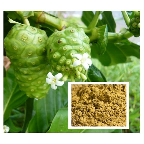 1,000 Grams./35.27 Oz. Morinda Citrifolia Powder,Tahitian Noni,Indian Mulberry, Beach Mulberry From Thailand