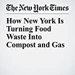 How New York Is Turning Food Waste Into Compost and Gas | Emily S. Rueb