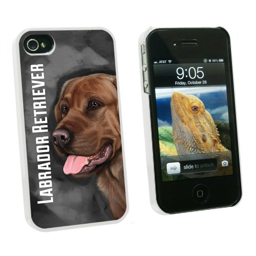 Chocolate Labrador Retriever Gray Grey - Dog Pet - Snap On Hard Protective Case for Apple iPhone 4 4S - White