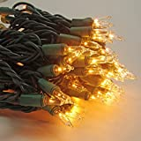 On'h Christmas Lights 100-Count Clear Mini String Lights Set Indoor Outdoor Lighting for Christmas Tree Party Wedding Home Bedroom Grapevine Decoration 100 Bulbs Green Wire