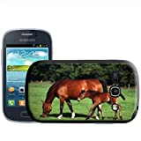 Fancy A Snuggle Mare With Foal Horse Design Hard Case Clip On Back Cover for Samsung Galaxy Fame S6810