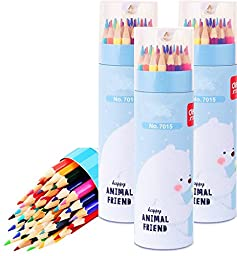 SkyPulse Colored Pencils for Art Drawing, Coloring, Sketching (36pcs-bottled)