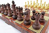 折りたたむと中にコマを収納できるチェスボード チェッカー (中) 【並行輸入品】