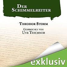 Der Schimmelreiter (       ungekürzt) von Theodor Storm Gesprochen von: Uve Teschner