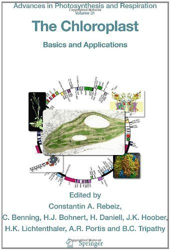 The Chloroplast: Basics and Applications (Advances in Photosynthesis and Respiration) (2010-08-03) PDF