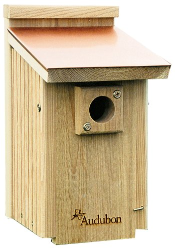 Audubon Bluebird House Plans Woodworktips