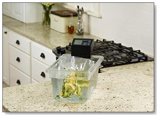 VacMaster SV1 Sous Vide Immersion Circulator Review