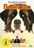 DVD Cover 'Ein Hund namens Beethoven