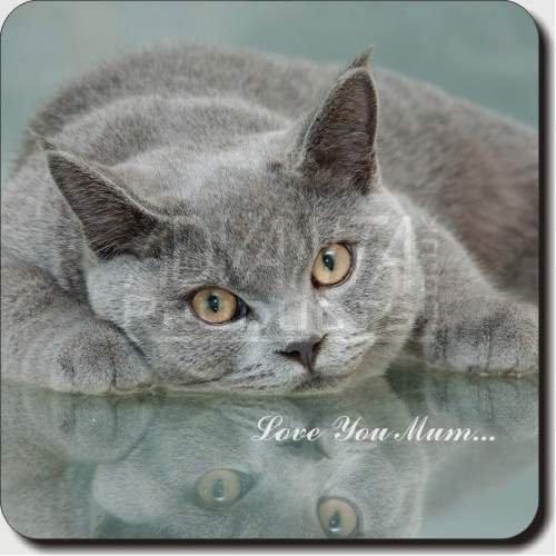 British Blue Cat Mum Sentiment Leather Coaster