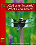 Que es un insecto? (Yellow Umbrella Books (Spanish))