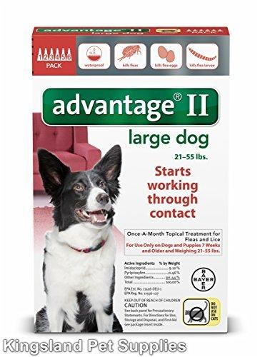 Advantage II 6 Month Dogs 21-55 Lbs (Red) @ (Dog Advantage Flea compare prices)