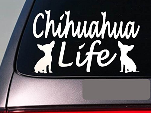"Chihuahua Life 6"" Sticker *E769* Mexico Teacup Leash Collar Dog Decal"