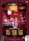 炬燵猫 【コタツネコ】 [DVD]
