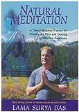 echange, troc Lama Surya Das - Natural Meditation