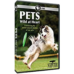 Nature: Pets - Wild at Heart