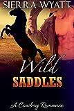 Romance: Cowboy Romance: Wild Saddles, A Cowboy Romance: (Western Cowboy Rodeo Romance, Alpha Male Cowboy Romance, Contemporary Western Alphas Romance) ... Contemporary Western Cowboy Short Stories)