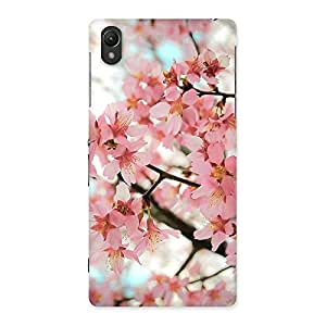 Delighted Cherry Blossoms Multicolor Back Case Cover for Sony Xperia Z2