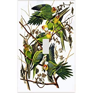 Parakeet Tree Decorative Switchplate Cover