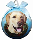Yellow Lab Christmas Ornament Shatter Proof Ball Easy To Personalize A Perfect Gift For Yellow Lab Lovers