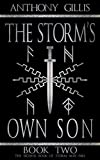 The Storm's Own Son: Book Two (Storm and Fire 2)