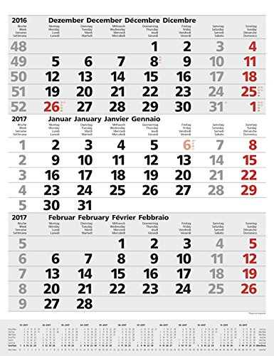 3-Monats-Planer Comfort Grau 2017: Vor- und Nachmonat, mit Datumsschieber