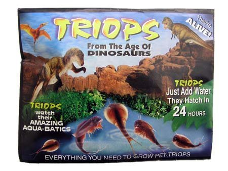 Grow Your Own Triops - A Living Dinosaur - 1