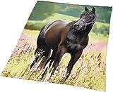 Herding 752485035 Fleecedecke Pferd, 130 x 160 cm