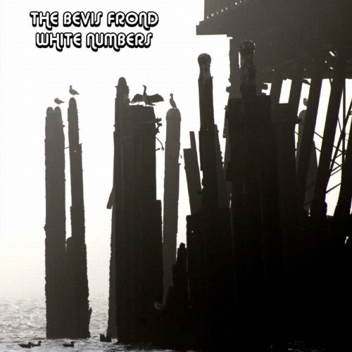 The Bevis Frond – White Numbers (2CD) (2013) [FLAC]