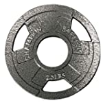 Champion 1272475 Olympic Grip Plate,...