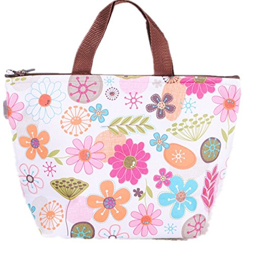 waterproof-picnic-lunch-bag-tote-insulated-cooler-travel-organizer
