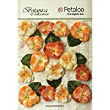 Petaloo Botanical Vintage Velvet Pansies (15 Pack), 1