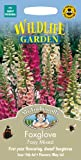 Mr. Fothergill's 13687 1000 Count Foxglove Foxy Mixed Seed