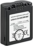 Wentronic 78123-GB Replacement Battery for Panasonic CGA-S006E, CGR-S006, DMW-BMA7 CGA-S006E/DMW-BMA7