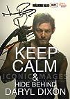 The Walking Dead Tv Print (11.7 X 8.3…