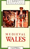 Medieval Wales (Cambridge Medieval Textbooks) (0521311535) by Walker, David