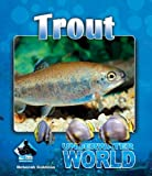Trout (Underwater World)
