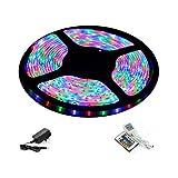 Diwali Decorative RGB Multi Colour LED Strip 5mtr With Remote & Driver