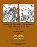 Prehispanic Settlement Patterns in the Upper Mantaro and Tarma Drainages, Junín, Peru: Volume 2, The Wanka Region (Memoirs of the Museum of Anthropology, University of Michigan)