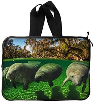 Fashionable Style manatee Macbook, Macbook Air/Pro 15 Inch All 15