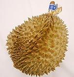【果物の王・恐怖のフルーツ】 ★タイ・フィリピン産 ドリアン 1玉(約1.8kg) ランキングお取り寄せ