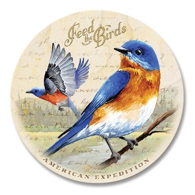 5 Piece Bluebird Postcard Stone Coaster Set