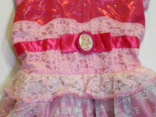 Imagen de Barbie - La Princesa y el Popstar - Vestido Tori